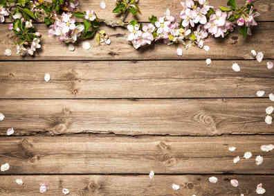 Nummer 14 Holzbretter  Blumen
