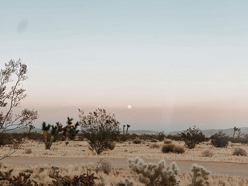 Full Moon, Desert