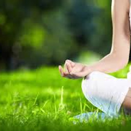 Yoga in the Park with Jenny Langer Yoga (1)