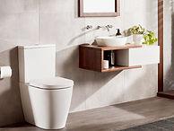 Toilet Image II.jpg