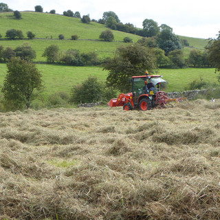 Haymaking in The Peak District
