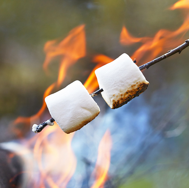 Toasting marshmallows over the fire pit