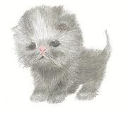 Marshmallow Kitten 3 (Small).jpg