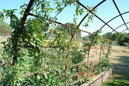 Garden rose arch Joel Tarr artist blacksmith