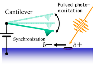 This is a schematic diagram illustrating the principle of tip-synchronized time-resolved electrostatic force microscopy.  CREDIT Osaka University
