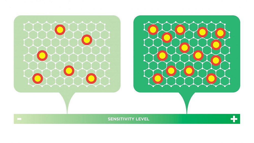 NYU researchers discovered how to predict the sensitivity of graphene electrodes — potentially paving the way to industrial-scale production of the ultra-small sensors: The density of intentionally introduced point defects is directly proportional to the sensitivity of the graphene electrode. If the density of these points is maximized, an electrode can be created that's up to 20 times more sensitive than conventional electrodes.