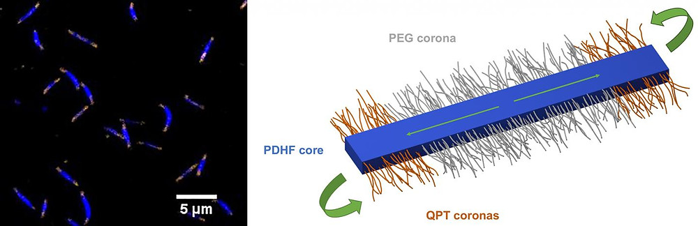 Image showing light emission from the polymeric nanostructures and schematic of a single nanostructure. @ University of Bristol