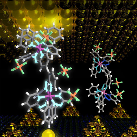 Organic memory devices show promise for flexible, wearable, personalized computing