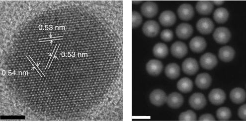 At left is a high-resolution transmission electron microscope image of a nanoparticle measuring 8 nanometers in diameter, with a 4-nanometer-thick shell. The scale bar is 5 nanometers. At right is a scanning transmission electron microscope image showing a collection of 8-nanometer nanoparticles with 8-nanometer shells (scale bar is 25 nanometers).  @ Lawrence Berkeley National Laboratory (Berkeley Lab)