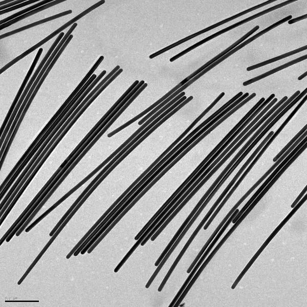 Gold nanowires grown in the Rice University lab of chemist Eugene Zubarev promise to provide tunable plasmonic properties for optical and electronic applications. The wires can be controllably grown from nanorods, or reduced. @ Zubarev Research Group / Rice University