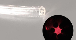 Edible, biocompatible, biodegradable optical fibers