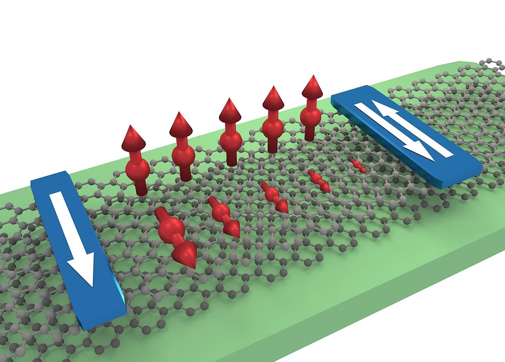 Illustration of anisotropic spin transport in a bilayer graphene flake between injector and detector electrodes. The out-of-plane spins are well transmitted whereas the in-plane spins decay fast.  @ Talieh Ghiasi / Van Wees Lab