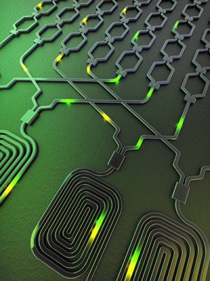 Artist's illustration of the chip. Tracks called waveguides guide photons in silicon. Spirals of these waveguides are used to generate photons that are routed around the processor circuit. @ Xiaogang Qiang, University of Bristol.