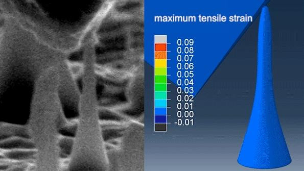 This image shows ultralarge and reversible elastic deformation. @ MIT