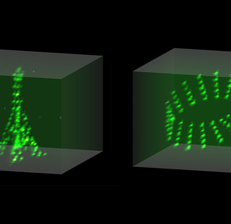 Rubidium atoms mimic the Eiffel Tower, a Möbius strip and other 3-D shapes