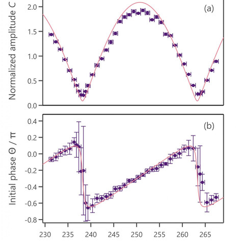 Control of quantum state of optical phonon in diamond induced by ultrashort light pulses