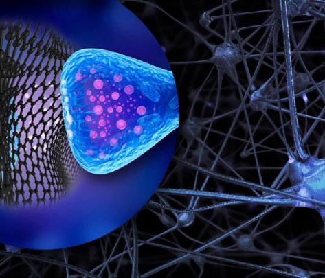 Like submicroscopic spacecrafts: graphene flakes to control neuron activity