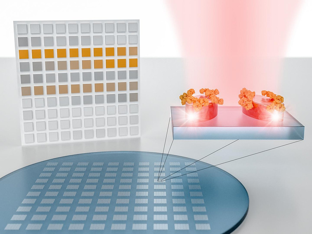 The authors show a pixelated sensor metasurface for molecular spectroscopy. It consists of metapixels designed to concentrate light into nanometer-sized volumes in order to amplify and detect the absorption fingerprint of analyte molecules at specific resonance wavelengths. Simultaneous imaging-based read-out of all metapixels provides a spatial map of the molecular absorption fingerprint sampled at the individual resonance wavelengths. This pixelated absorption map can be seen as a two-dimensional barcode of the molecular fingerprint, which encodes the characteristic absorption bands as distinct features of the resulting image. @ EPFL