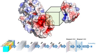Deep learning, 3D technology to improve structure modeling, create better drugs