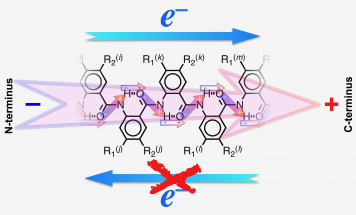 A bioinspired molecular electret dipole directs all the electrons toward the positive pole while preventing them from moving toward the negative pole. @ Valentine Vullev, UC Riverside