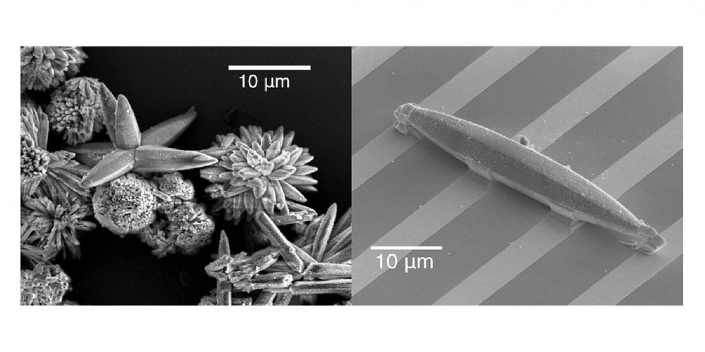 At left, a scanning electron microscopy (SEM) image of an iron BDP MOF crystal; at right, an iron BDP MOF single-crystal device bonded to a platinum microelectrode array. @ Berkeley Lab