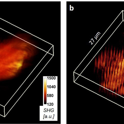 New technique takes 3D imaging an octave higher
