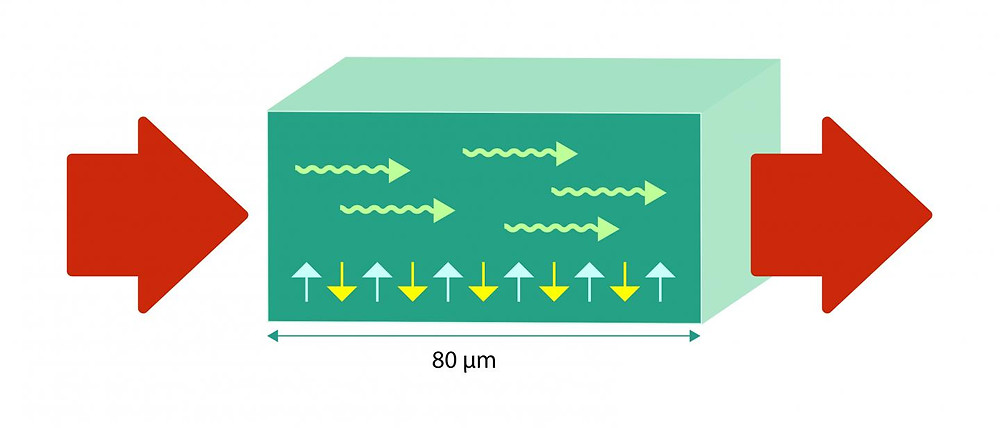 Spin current is initiated with an electric field at one end of the material, an antiferromagnet. The spin in the antiferromagnet alternates direction (yellow and blue arrows). The signal spreads as a wave (green arrows) through the antiferromagnet. At the other end of the material, the spin current is transferred to an electric current again @ Kolbjørn Skarpnes/NTNU