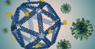 "Engineers use ""DNA origami"" to identify vaccine design rules"