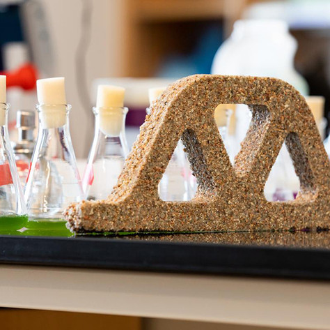 Bacteria and sand engineered into living concrete