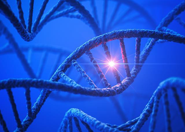 An artist's rendering of a DNA molecule, which can be re-engineered with CRISPR to test mutations. @ Getty Images