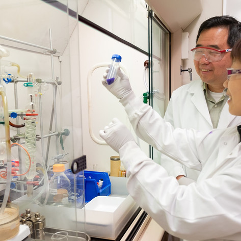 Scientists maximize the effectiveness of platinum in fuel cells