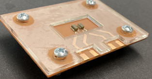 Device could 'hear' disease through structures housing cells