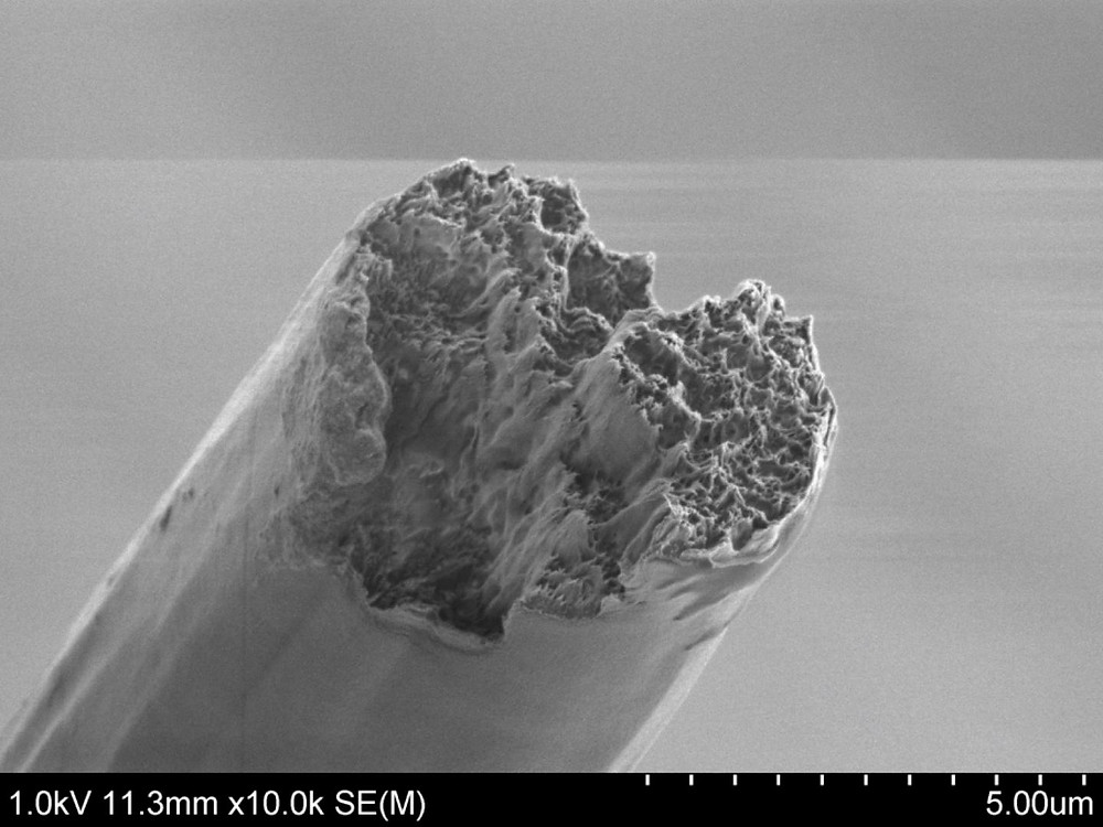 An artificial cellulose fiber made from cellulose nano fibrils seen with a scanning electron microscope. @ Nitesh Mittal, KTH Stockholm