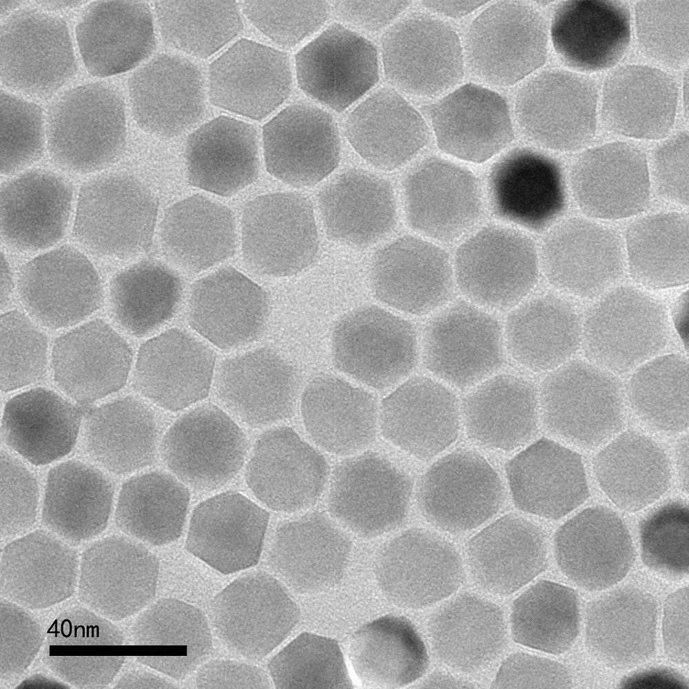 A transmission electron microscope image of zinc ferrite nanoparticles with an average diameter of 22 nanometers. This type of nanoparticle possesses high heating performance at very low magnetic fields suitable for clinical use, researchers say. @ Xiang Yu