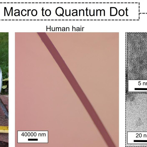 Nanoparticles derived from tea leaves destroy lung cancer cells: Quantum dots have great potential