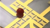 Sound waves transport droplets for rewritable lab-on-a-chip devices