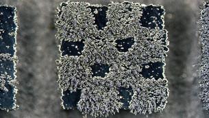 Freshly printed magnets