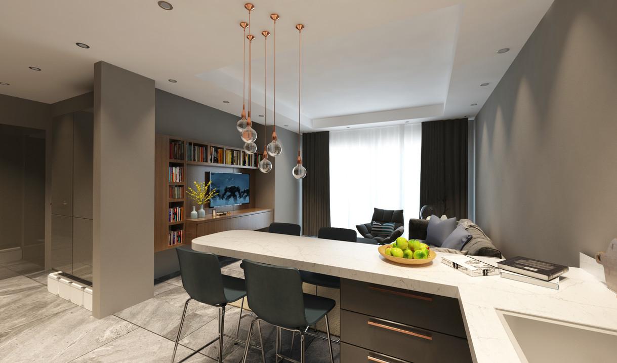 1+1 plan - Living area