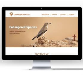 Endangered Species-Digital Prototyping