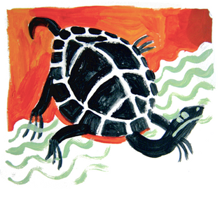 2021.02.25 naive turtle.png