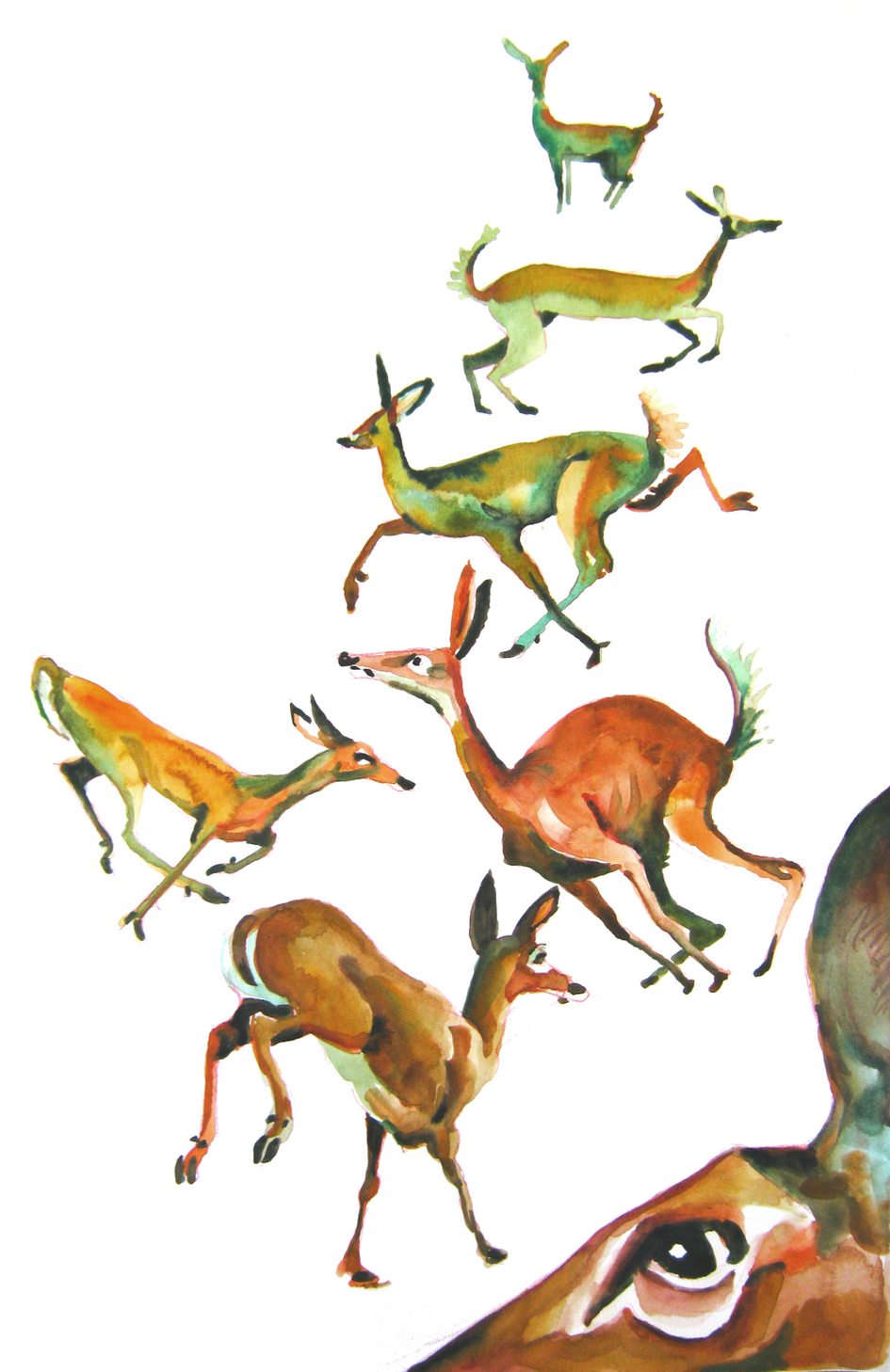 2020.11.06 deer running-b.png