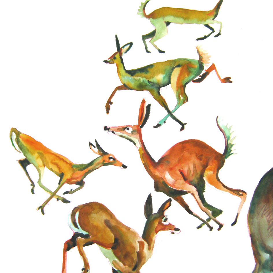 2020.11.06 deer running-b.png