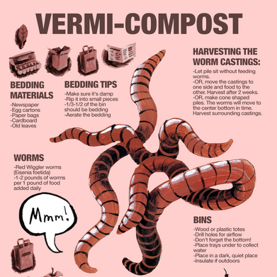 2021.04.05 Vermicompost-final.png