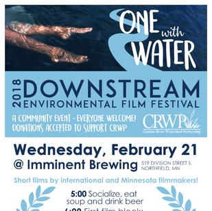 Event Poster for Film Festival