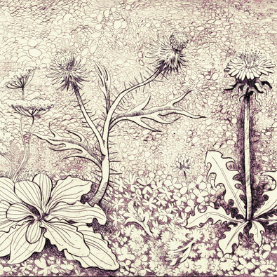 2020.09.14 weeds full.png