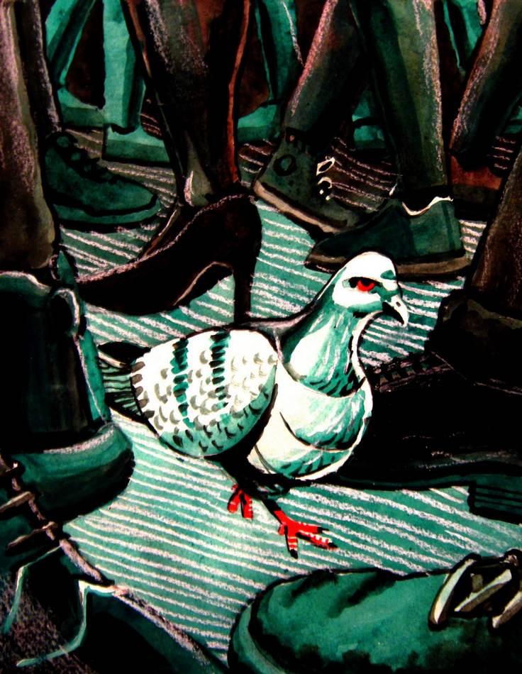 Paloma Solita Wanders the Sea of Shoes