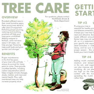 Instructional Brochure for Tree Sale