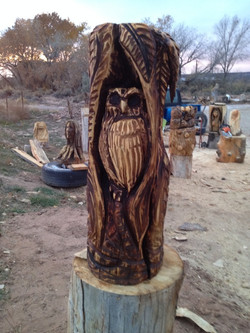 Owl in the Nook