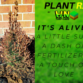 Plant Rx Saves Another One!