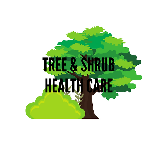 Tree & Shrub Health Care.png